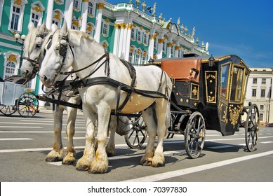 Horse in harness and the carriage to the Palace Square in St. Petersburg