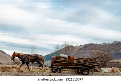 A horse harnessed to a wagon. And on the wagon trees to warm the house during the winter. Rumania