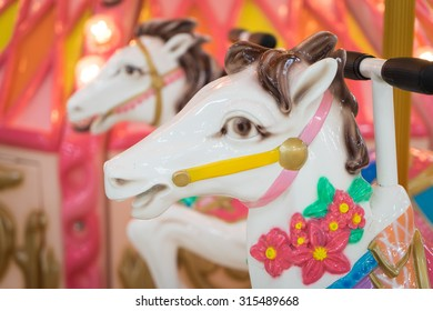Horse Head in a merry go round