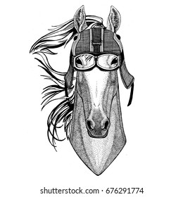 Horse, hoss, knight, steed, courser wearing motorcycle helmet, aviator helmet Illustration for t-shirt, patch, logo, badge, emblem, logotype Biker t-shirt with wild animal