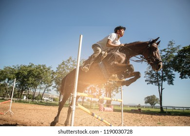 horse and jockey jumping