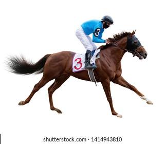 horse jockey race track isolated on white background