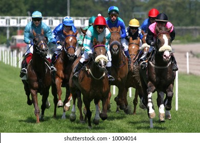 horse and jockey at race-course up to the finish line