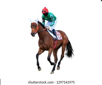 horse jockey horse racing isolated on white background