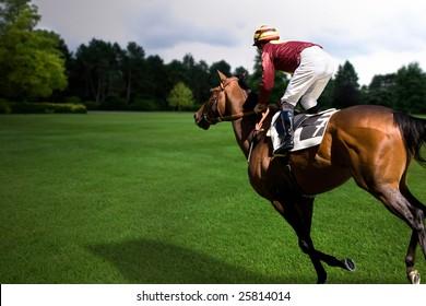 Horse and jockey running through a field at twilight