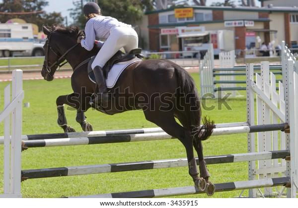 A horse jumping a barrier