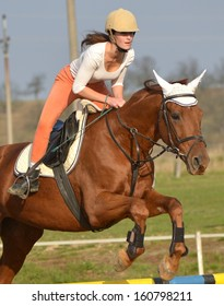 horse at jumping competition