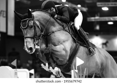 Horse Jumping, Equestrian Sports themed photograph in black and white.