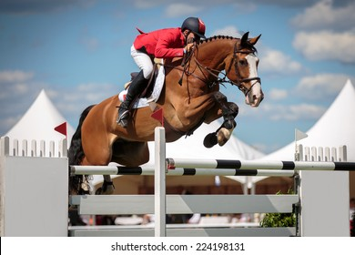 Horse Jumping, Equestrian Sports themed photo