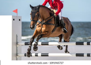 Horse Jumping Event, Show Jumping Sports.