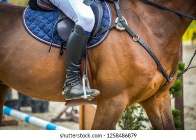 Horse Jumping Event, Show Jumping Sports, Equestrian themed photo.