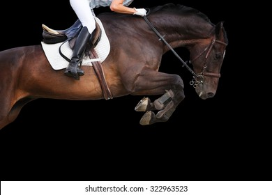 Horse jumping on black background.