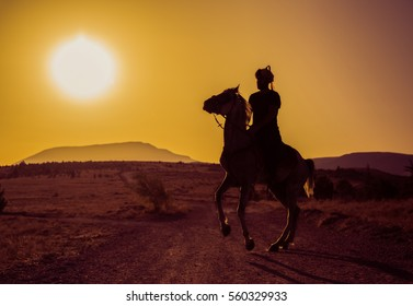 horse and man Silhouette at sunset