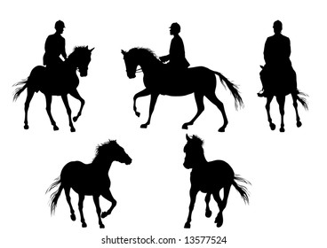 horse and man in white background