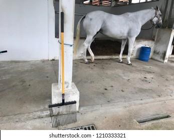 Horse Muck Images, Stock Photos & Vectors   Shutterstock