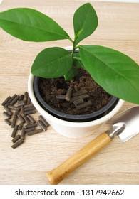 Horse manure pellets for fertilizing