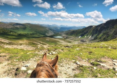 horse and mountains