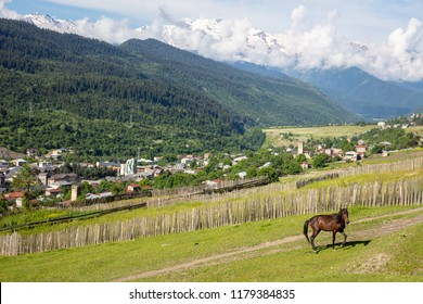 horse on field, view of village from  hill and the top of the mountains in the clouds on  sunny day