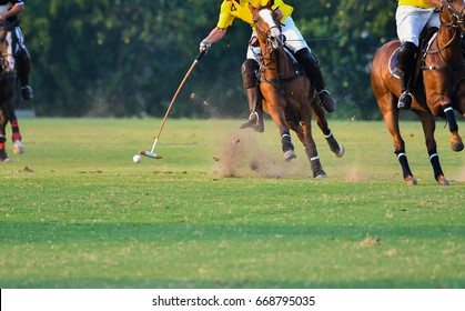 Horse Polo player in the match.