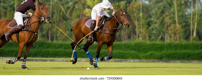 Horse Polo Player protect a polo ball.