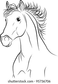 horse portrait - freehand on a white background