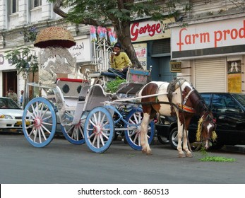 horse pulling a carriage on the street of mumbai, india