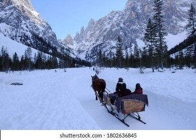 A horse pulling a sleigh with tourists in the beautiful mountain valley Val Fiscalina in Dolomites in evening light. Sexten Dolomites, South Tyrol, Italy