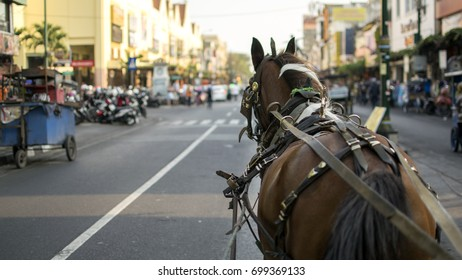 A horse is pulling a traditional transportation we call andong in the middle of Jogja city