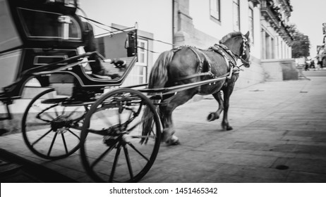 Horse pushing a traditional carriage blurred photo