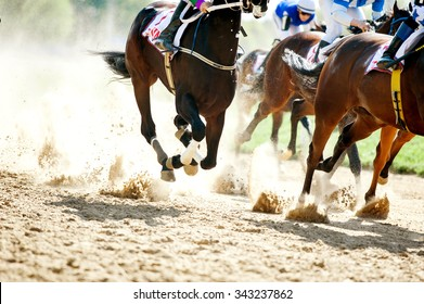 horse racing details of galloping horses legs on hippodrome track