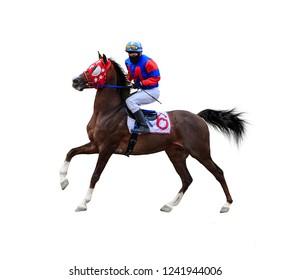 horse racing jockey race isolated on white background