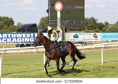 HORSE RACING - Longhouse Sale ridden by Harry Skelton and trained by Dan Skelton wins at Market Rasen Races : Market Rasen, Lincolnshire, UK : 5 August 2018 : Pic Mick Atkins