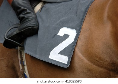 Horse racing, horse with number 2