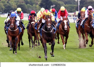 HORSE RACING - Racehorses covering breadth of track and sprinting towards the finish at York Races : York Racecourse, Nth Yorkshire, UK : 9 September 2018
