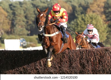 HORSE RACING - Royal Village ridden by Tom O'Brien jump the last fence and win the £50,000 Steeplechase at Market RasenMarket Rasen Racecourse, Lincolnshire, UK : 20 October 2018