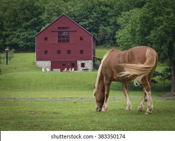 Horse and Red Barn, Hudson Valley, New York