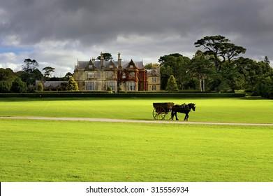Horse ride in Killarney National Park, Ireland