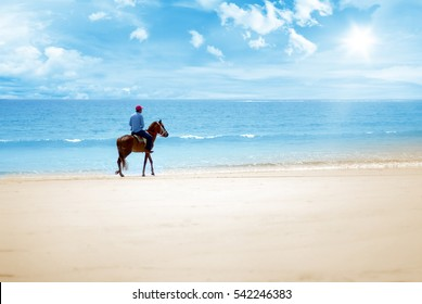 horse ride on the beach on a sunny day
