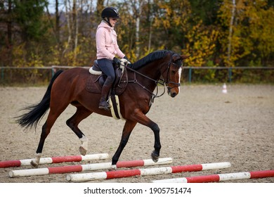 Horse and rider during training with trotting poles, horse lifts its front leg over the pole.