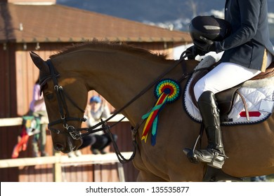 Blue Ribbon Horse Images, Stock Photos & Vectors | Shutterstock