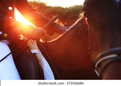 Horse rider sunset dark
