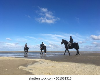 Horse riding at the beach of Terschelling the Netherlands