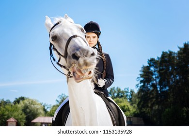 Horse riding. Beautiful professional horsewoman with long braid wearing helmet riding her horse