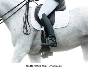 Horse riding concept: female rider on a white arabian horse in a high key style