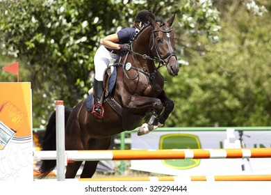 horse riding jumping competition