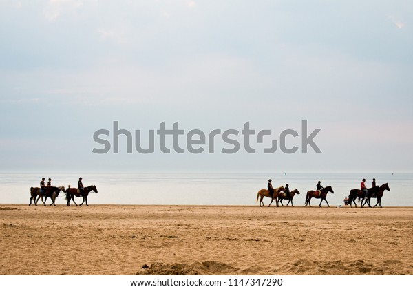 horse riding lessons on the beach