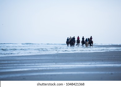 Horse riding on the beach germany