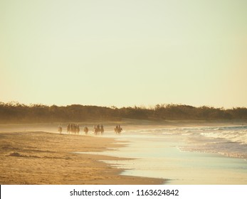 Horse riding on the beach at sunset at Rainbow Beach Queensland