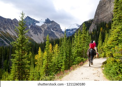 Horse riding on Lake Agnes Trail in autumn, around Lake Louise, Banff National Park, Canadian Rockies, Alberta, Canada