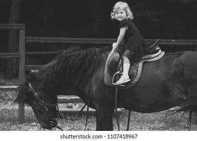 horse riding training. Child sit in rider saddle on animal back. Girl ride on horse on summer day. Friend, companion, friendship. Equine therapy, recreation concept. Sport, activity, entertainment
